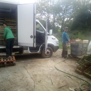 Céline et Antoine chargent le camion pour le marché.a